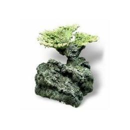 หินเทียม-ประการังเทียม