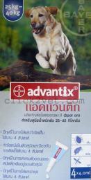 แอดแวนติกสำหรับสุนัขน้ำหนัก 25 - 40 กก.