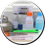 ชุดทดสอบอาหาร Staphylococcus Aureus Test Kit