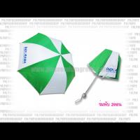 ร่ม umbrella 6