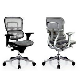 เก้าอี้เพื่อสุขภาพ Ergohuman-N (EH-N)