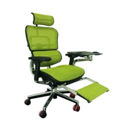 เก้าอี้เพื่อสุขภาพ Ergohuman Plus (EH-P)