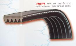 สายพาน แบบ POLY-V