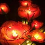 โคมไฟกุหลาบสีส้มแดง