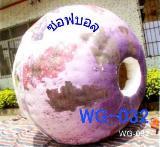 ลูกบอลน้ำ HT-GW032