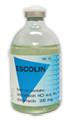 ยาสำหรับโค-กระบือ เอสโคลิน