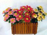 ดอกไม้พุ่ม WEB-06