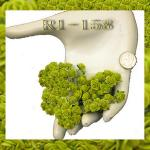 ดอกไม้กระดาษ สีเขียว R1-158