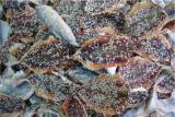 ปลาทูงาตากแห้ง