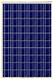 แผ่นพลังงานเซลล์แสงอาทิตย์ ยี่ห้อProwercom รุ่นPPV-216M6