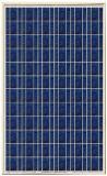 แผ่นพลังงานเซลล์แสงอาทิตย์ ยี่ห้อProwercom รุ่นPPV-260M6