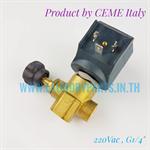 Steam Solenoid valve 1/4 นิ้ว สำหรับหม้อต้มเตารีดไอน้ำ