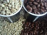 เมล็ดกาแฟ Colombia Excelso