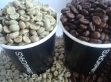 เมล็ดกาแฟ KenyaAA